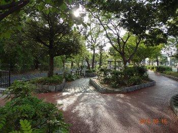 三津川公園.jpg